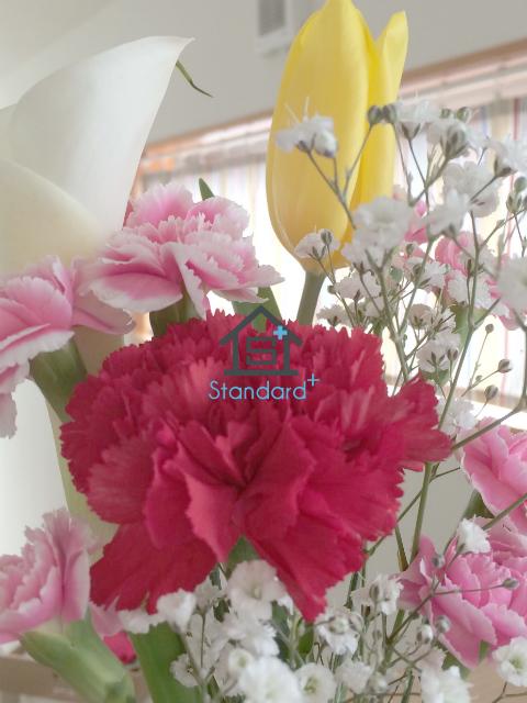 b0184205_1540448.jpg
