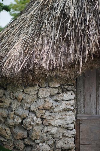 海界の村を歩く 東シナ海 与論島(鹿児島県)_d0147406_20532320.jpg
