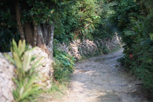 海界の村を歩く 東シナ海 与論島(鹿児島県)_d0147406_21294464.jpg