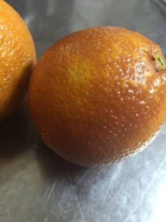 ブラッドオレンジ_e0025817_00065772.jpg