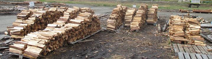 メルマガ:薪林業 (846号)_a0051539_1911836.jpg