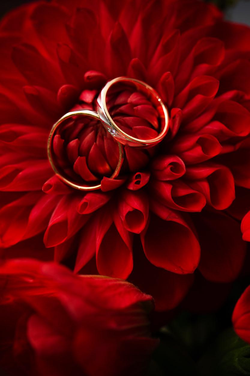 結婚式からの・・・。_e0124896_1961594.jpg