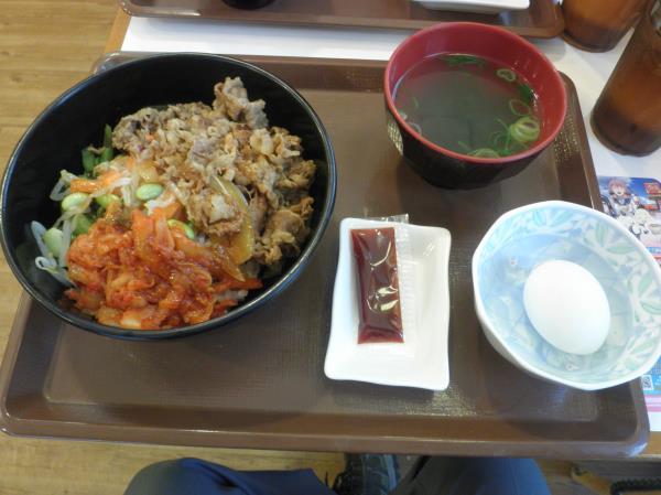 すき家の牛ビビンバ丼定食  西宮今津巽店_c0118393_1739181.jpg