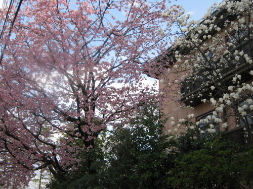 清瀬の会合を終えて京都から甲子園へ!!_b0255217_17381617.jpg