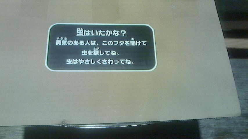 f0161535_1127036.jpg