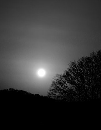 2016年3月25日 早春の夕暮れ ①_b0341140_1840365.jpg