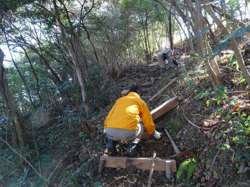 ハンノキ林の整備継続・・・うみべの森_c0108460_21301059.jpg