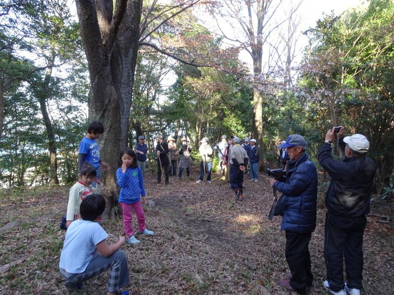 『阪南市:夕日鑑賞会』うみべの森で里山体験_c0108460_23394302.jpg
