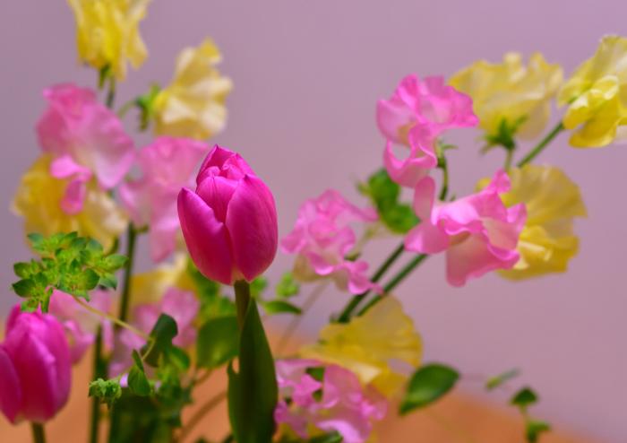 d0335768_14372081.jpg
