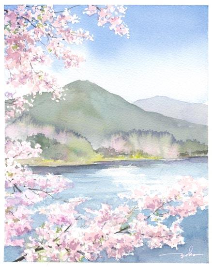 桜とキャベツ 水彩_f0176370_9395321.jpg
