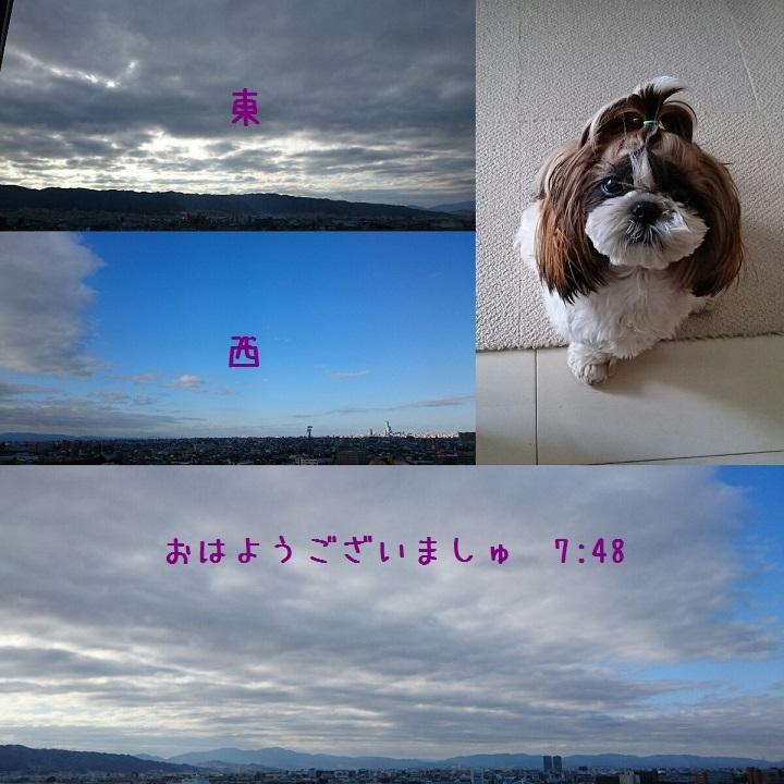 c0363378_17503936.jpg
