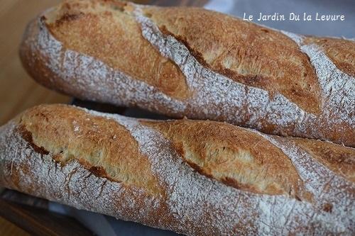 思い切りパンを焼く。_f0329586_15132148.jpg