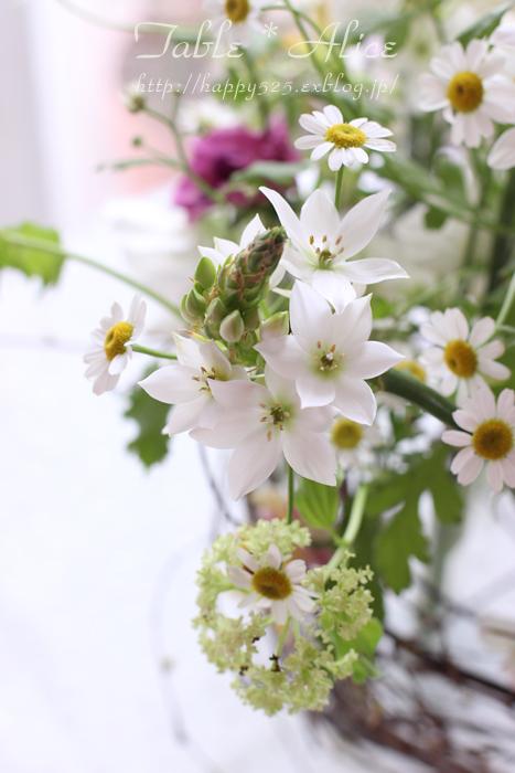 春のアレンジメント_f0306287_1553575.jpg