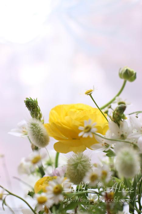 春のアレンジメント_f0306287_1561892.jpg