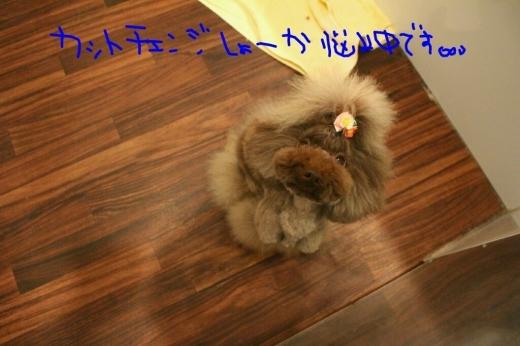 b0130018_21234501.jpg