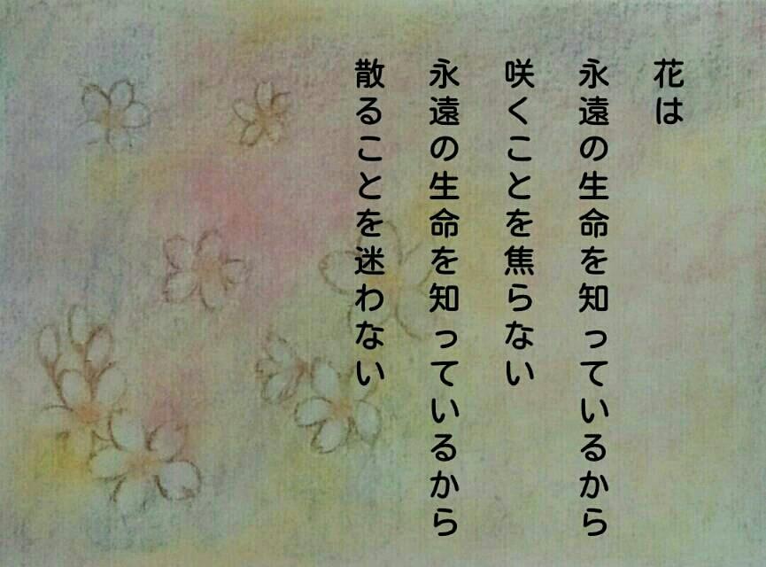 a0326636_22541618.jpg