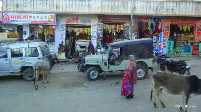 インド・ラジャスタンの旅 12 インド版「万里の長城」クンバルガル砦_a0092659_16584223.jpg