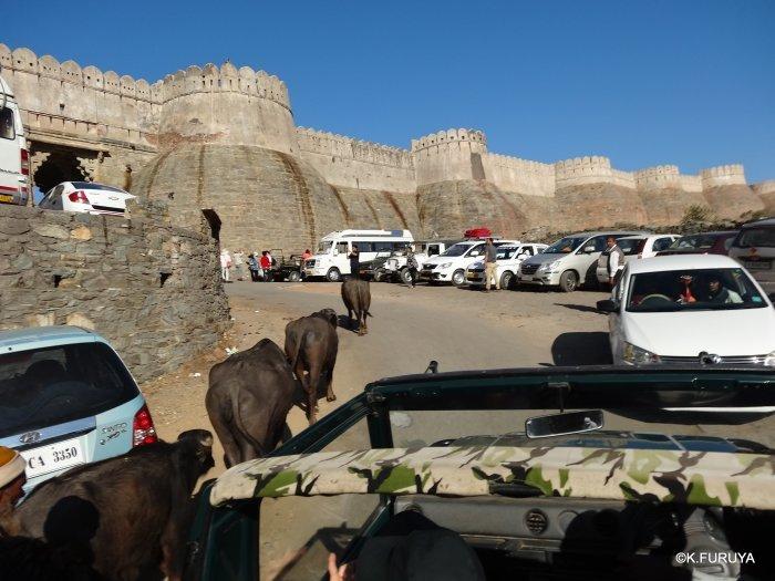 インド・ラジャスタンの旅 12 インド版「万里の長城」クンバルガル砦_a0092659_17044779.jpg