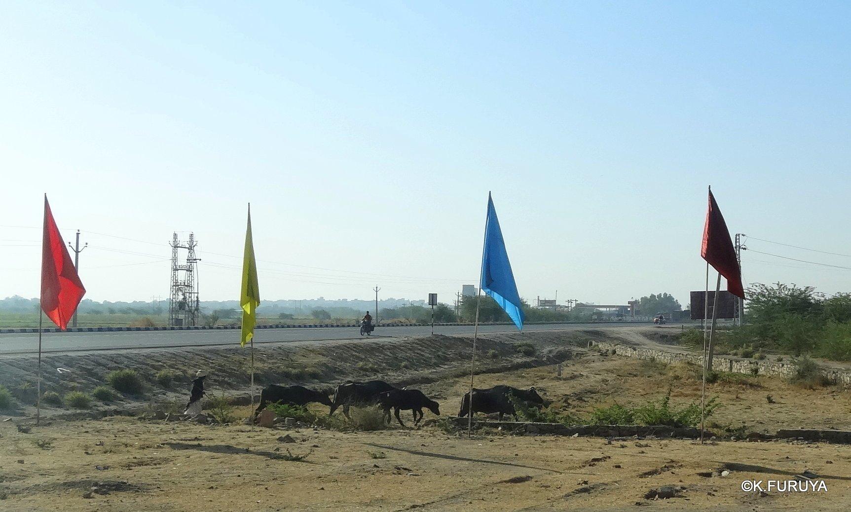 インド・ラジャスタンの旅 12 インド版「万里の長城」クンバルガル砦_a0092659_23070277.jpg