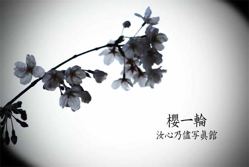 f0215487_03372126.jpg