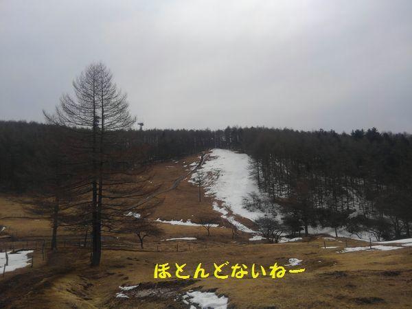 d0224111_20032254.jpg