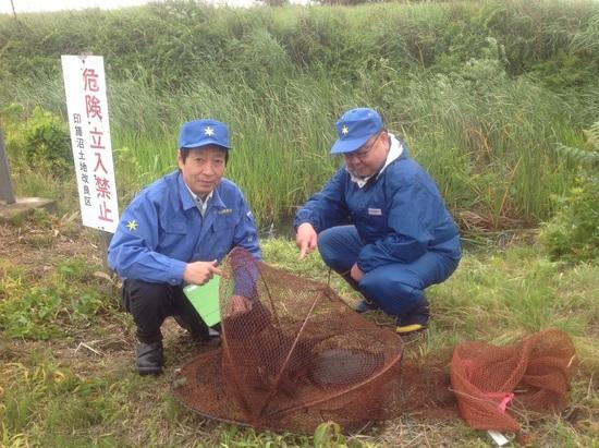 16.03.23(水) 印旛沼周辺カミツキガメ生息個体数:15970❗️_f0035232_17503925.jpg