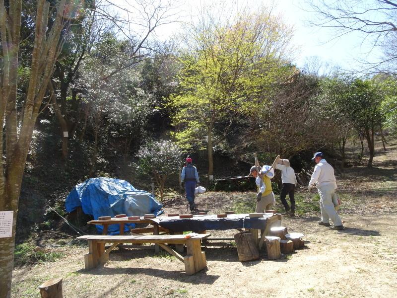 孝子の森は春である  by  (TATE-misaki)_c0108460_00484589.jpg