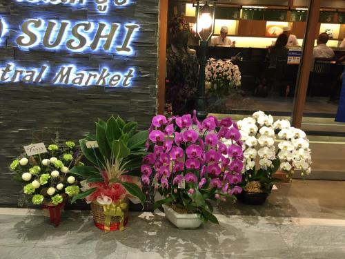 遠藤さんバンコク店オープン!!!バンコクおすすめお寿司 安くて美味しい!ラピスラズリーと像さんに願いを込めて♡_f0355367_14444655.jpg