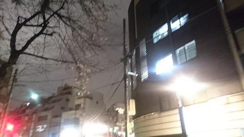 「街路灯」_a0075684_2085174.jpg