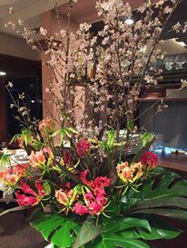 東海桜_e0025817_22422214.jpg