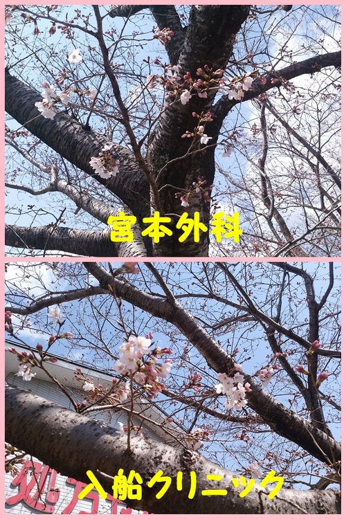 b0320049_16544499.jpg