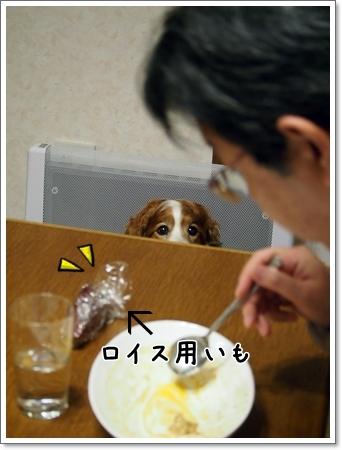 d0013149_23561256.jpg