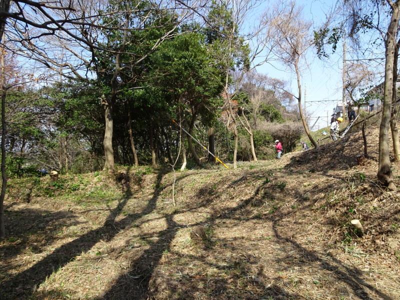 ハンノキ林の整備ほぼ完了・・・うみべの森_c0108460_21472356.jpg