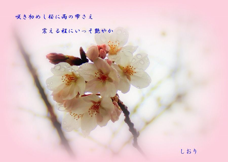 c0187781_23420143.jpg