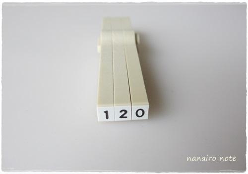 e0313027_911521.jpg