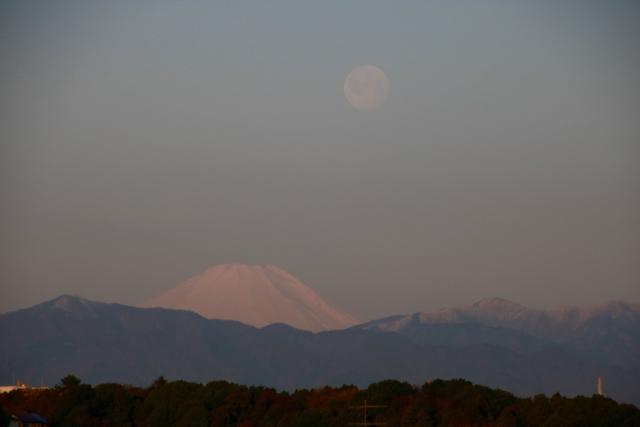 朝の富士山とお月様。_f0348831_08002126.jpg