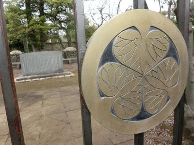 上野は一分咲き「東京ウォーク」_f0019247_12583597.jpg