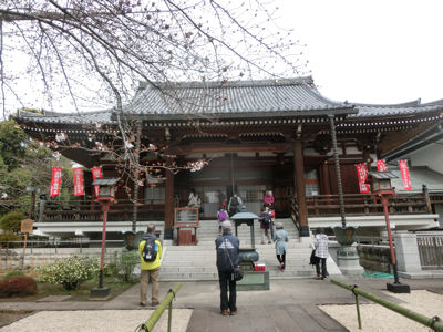 上野は一分咲き「東京ウォーク」_f0019247_1355337.jpg