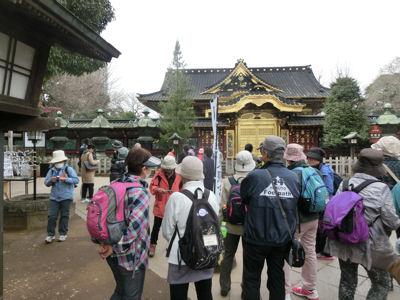 上野は一分咲き「東京ウォーク」_f0019247_1444637.jpg