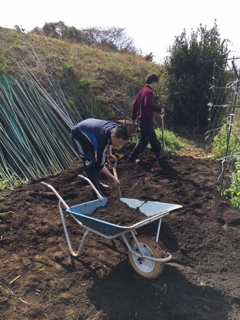 土を耕し エンドウネットや蚕豆の周りに防鳥ネットを張る準備をしていきます_c0222448_12050441.jpg