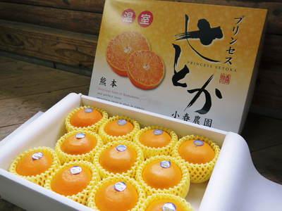 究極の柑橘「せとか」 今年も大好評!お急ぎください!!今期発送予定分カウントダウンです!_a0254656_17161020.jpg