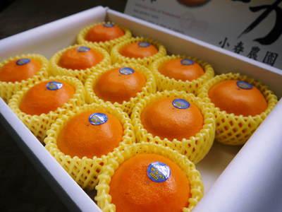 究極の柑橘「せとか」 今年も大好評!お急ぎください!!今期発送予定分カウントダウンです!_a0254656_17273315.jpg