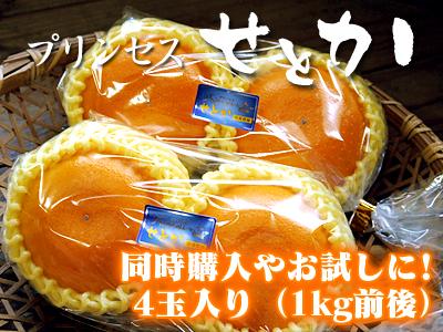 究極の柑橘「せとか」 今年も大好評!お急ぎください!!今期発送予定分カウントダウンです!_a0254656_17365497.jpg