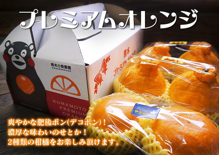 究極の柑橘「せとか」 今年も大好評!お急ぎください!!今期発送予定分カウントダウンです!_a0254656_17424411.jpg
