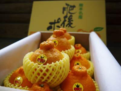 究極の柑橘「せとか」 今年も大好評!お急ぎください!!今期発送予定分カウントダウンです!_a0254656_1750910.jpg