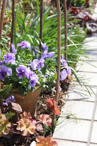 ◆春が足踏み_e0154682_22340923.jpg