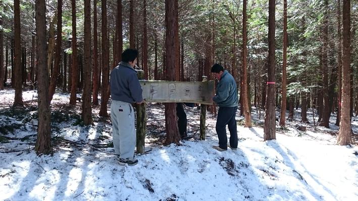 森林ボランティア_c0066693_1464543.jpg