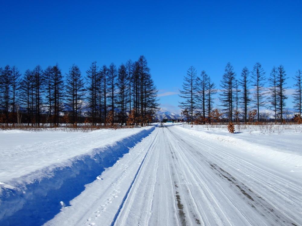 冬は快晴の日が多い十勝・・中札内村・村道47号線をゆく。_f0276498_13433302.jpg