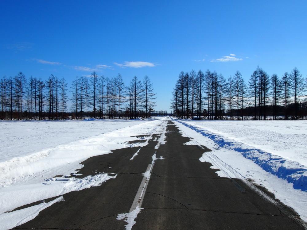 冬は快晴の日が多い十勝・・中札内村・村道47号線をゆく。_f0276498_13451397.jpg