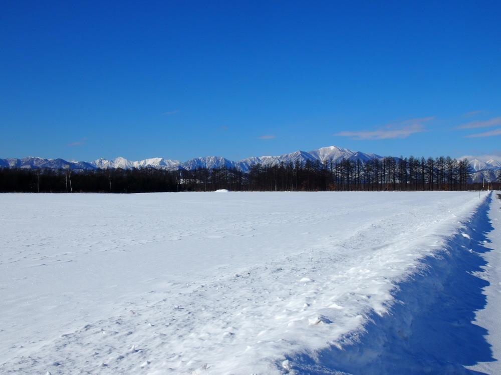 冬は快晴の日が多い十勝・・中札内村・村道47号線をゆく。_f0276498_13460218.jpg